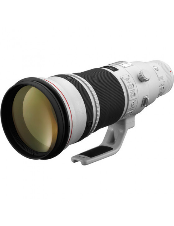 Canon EF 500mm f/4L IS