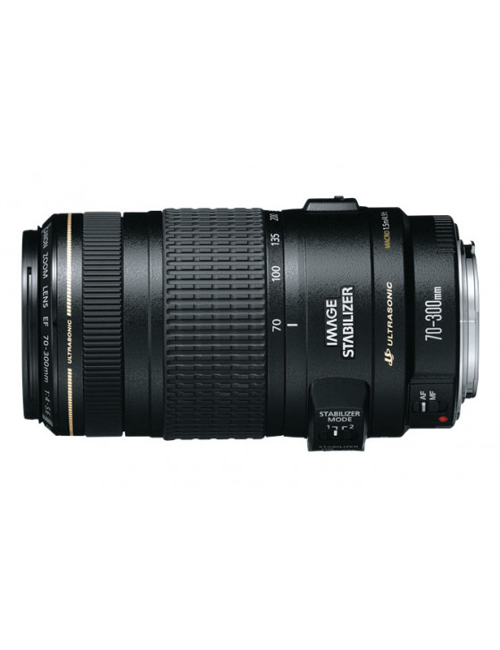 Canon EF 70-300mm f/4-5.6 IS