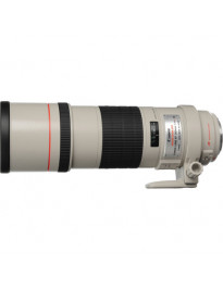 Canon EF 300mm f/4L IS