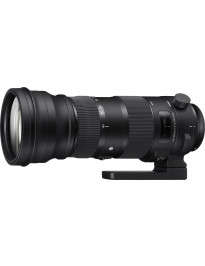 Sigma 150-600mm f/5-6.3 OS Sports (Nikon mount)