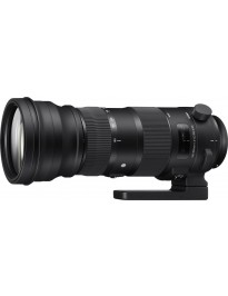 Sigma 150-600mm f/5-6.3 Sports OS (Canon mount)